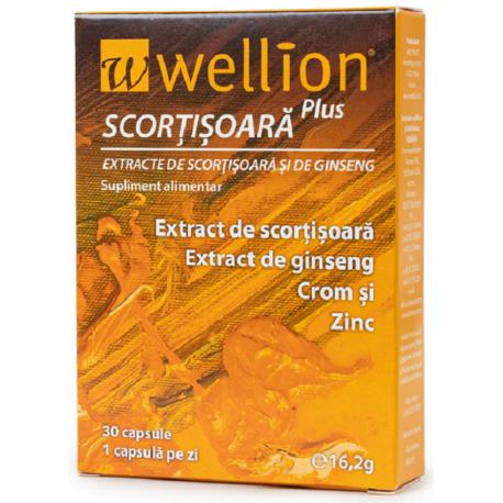 Wellion Cinnamon Plus